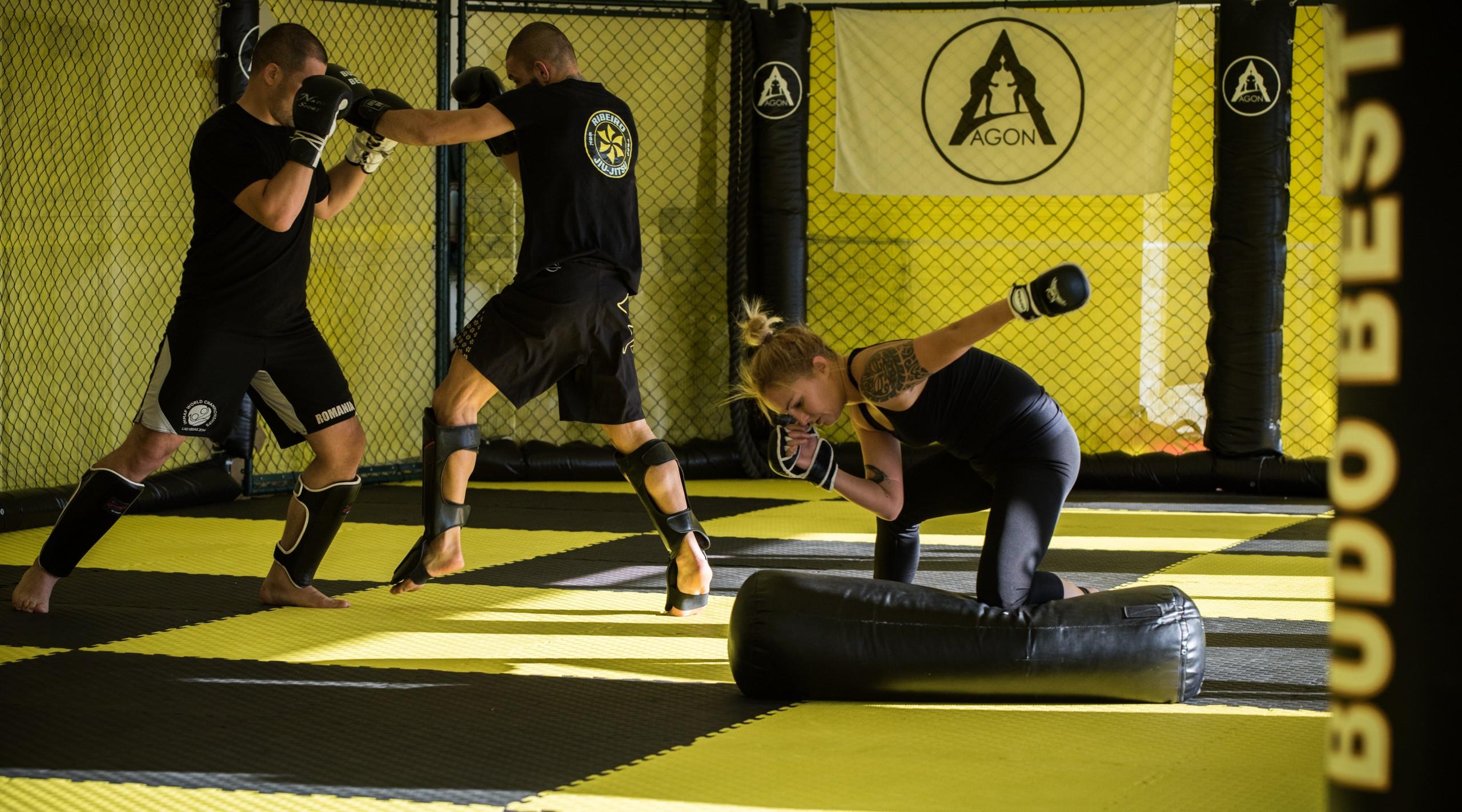 Arte Martiale Mixte – MMA